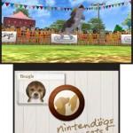 Imágenes de Nintendogs™ + Cats 3DS