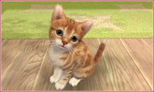 Video ingame de Nintendogs + Cats