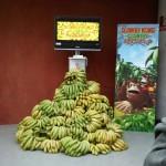 [Actualizado]Donkey Kong Returns
